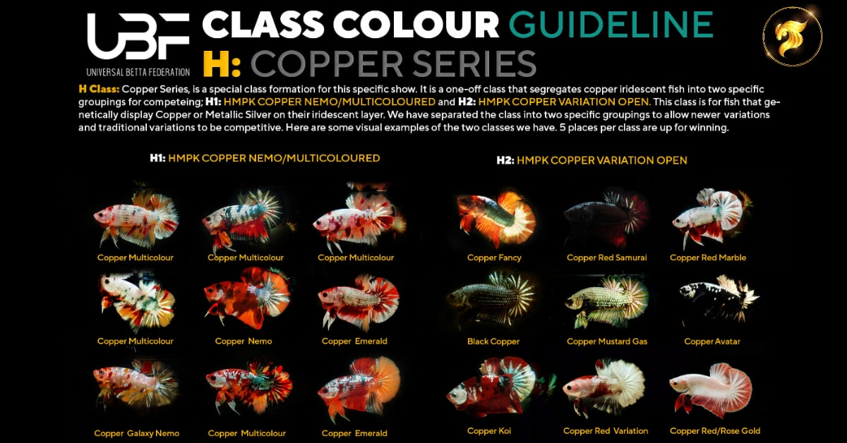Class Color Guideline Copper series